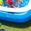 芝生日記#21|ポット苗の芝ティフトン419|芝生の上で念願のプール!!